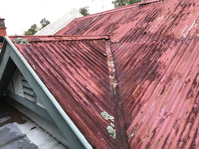Hawthorn – Old Metal Roof